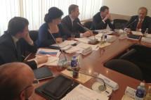 Елена Николаева: «У нас государственный контроль и надзор перешел все разумные пределы»