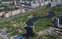 Петербуржцев ждёт референдум