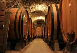 Виноделие на саморегулировании